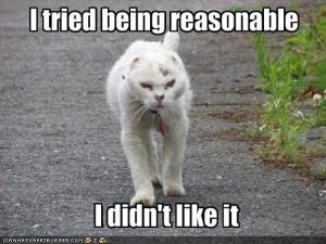 reasonable-cat